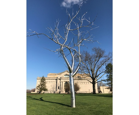 Silver Tree Sculpture, St. Louis